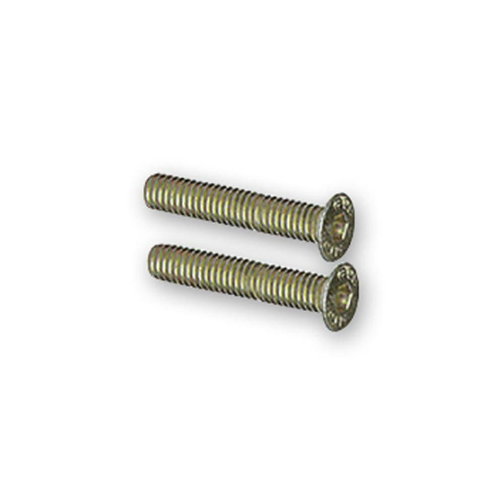 MEHARI LOWER FIXED DOOR HINGE PLATE SCREWS (2 PIECES)