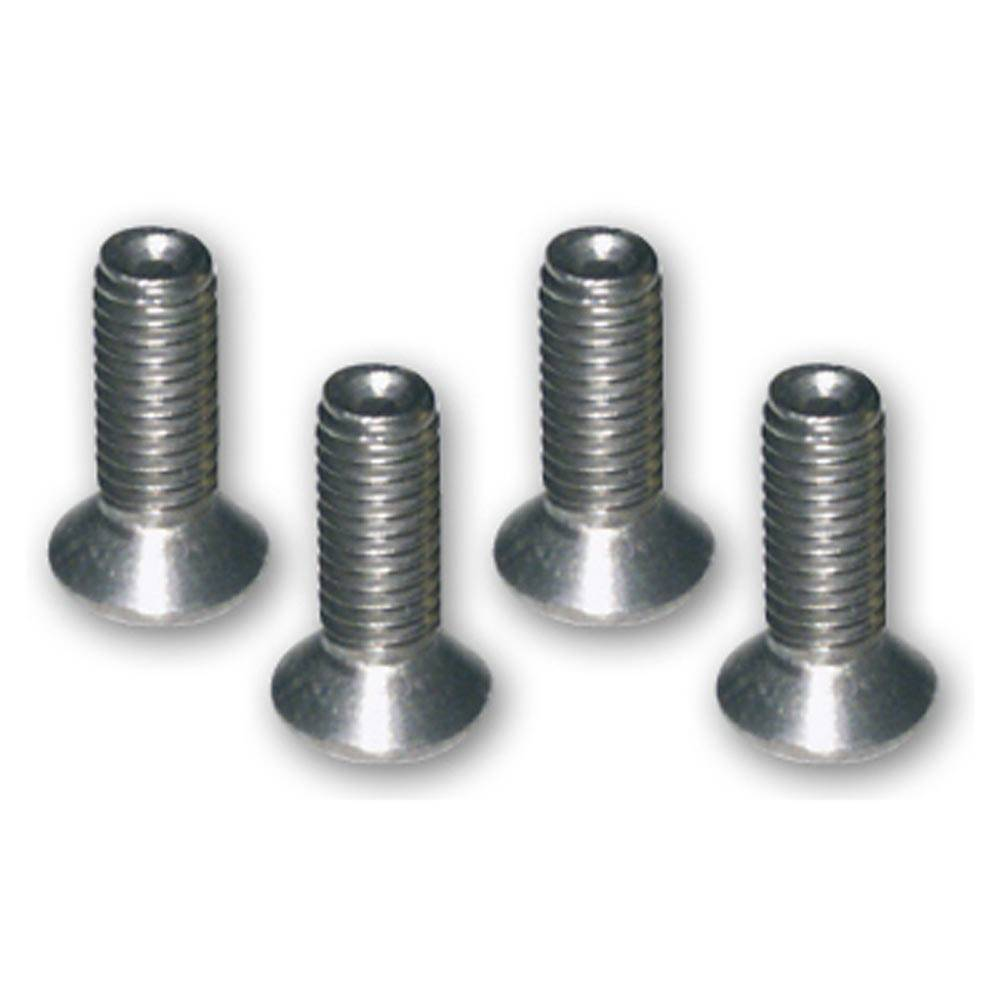 2CV HOOD REAR CORNER TRIM SCREWS (4 PIECES)